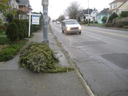 A Christmas tree blocking the sidewalk
