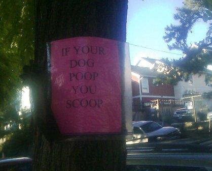 If your dog poop, you scoop.